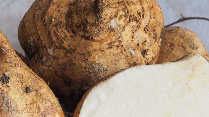 Jicama Vs Potato